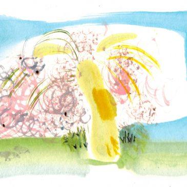 Cherry blossom for the new era Reiwa
